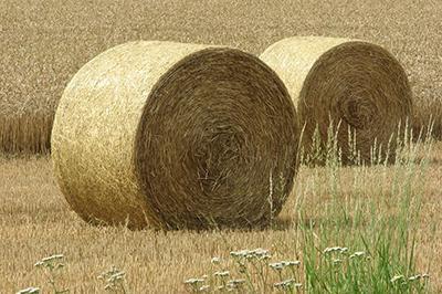 Продукти за защита и балиране на сено, слама и фураж